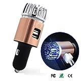 車載空気清浄器 空気清浄機 イオン発生機 エアクリーナー 2in1 USBイオン発生器 静音 12V車専用 (ゴールド)