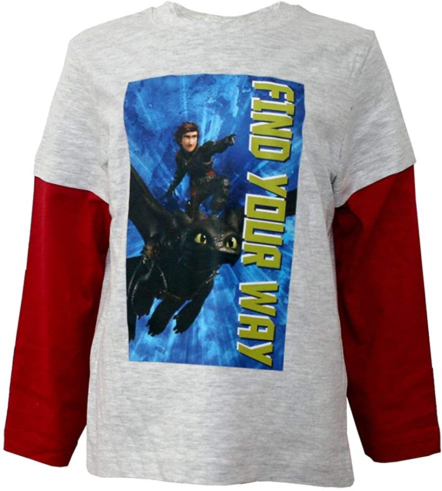 DreamWorks How to Train Your Dragons Boys Long Sleeve Shirt