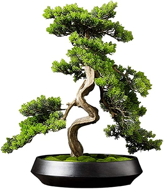 Amazon Com Xuejuanshop Artificial Bonsai Tree Welcome Bonsai Artificial Cedar Bonsai Trees Fake Potted Plants Indoor Evergreen Home Office Table Feng Shui Greenery Decor Artificial Pot Faux Potted Plant Home Kitchen