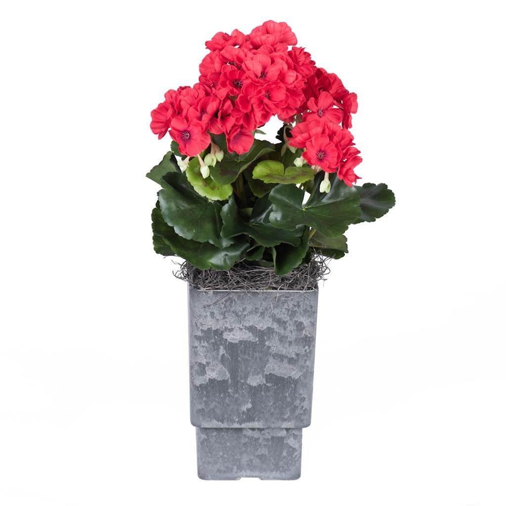 Vickerman F12222 Red Geranium Everyday Floral