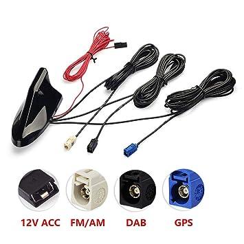Antenne Autoradio Antennensplitter Fakra Z Buchse auf Fakra Z Male mit SMB Adapter Signal Amplifier Radio Antenna DAB Splitter für Auto Radio MEHRWEG Auto- & Fahrzeugelektronik Eightwood DAB