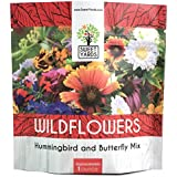 Wildflower Seeds Butterfly and Humming Bird Mix - Large 1 Ounce Packet 7,500+ Seeds - 23 Open Pollinated Annual and Perennial Species