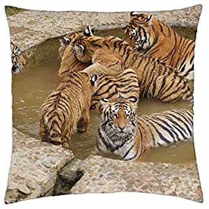 Bathing Tigers - Throw Pillow Cover Case (18
