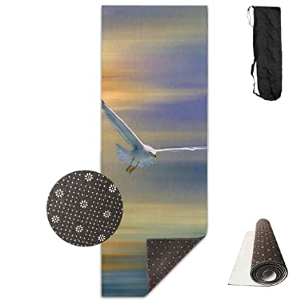 fd27f7d2fa5d3 Amazon.com : Gym Mat Seagull Surrealism Paintings Fitness High ...