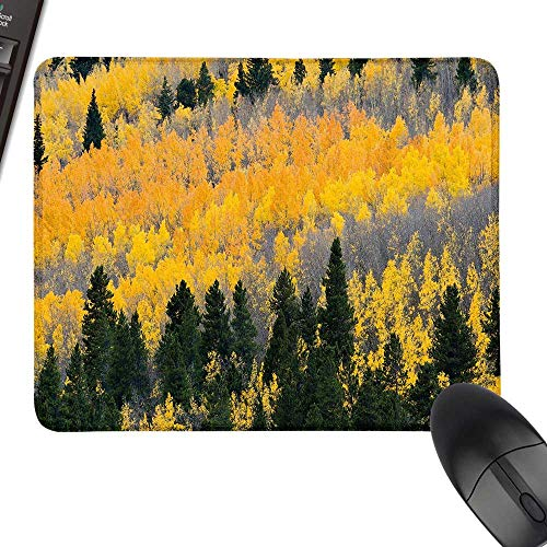 Fall Anti-Slip Mouse Mat Colorful Aspen Forest in Colorado Rocky Mountains Western Wilderness USA Theme for Computers, Laptop, Office & Home 35.4