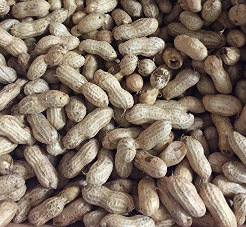 Farm Fresh Green Peanut Dude Home Boil Kit