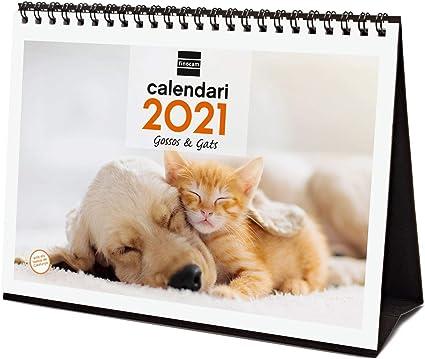 Calendrier Bureau 2021 Finocam Calendrier de bureau 2021 Écrire des images Chiens et
