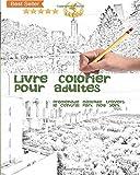 Livre à colorier pour adultes: Promenade magique à travers le Central Park à New York: Vol 1