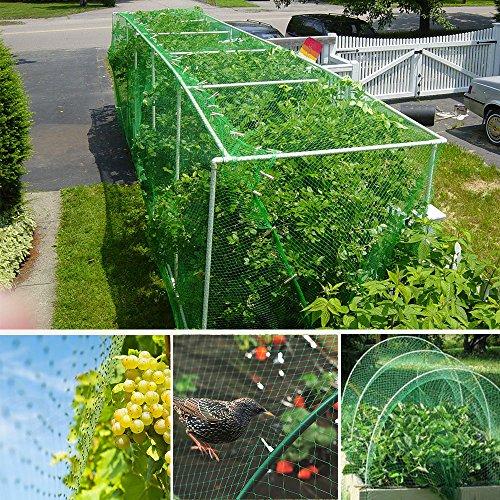 - TedGem Bird Netting, 4 10m - 32.8 x 13.2 feet Green Garden Plant Net Tree Netting, Rodent Bird Protection Net, Bird X Netting to Protect Garden Plants, Fruit from Birds Damage