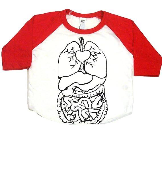 Amazon.com: Órganos internos Cool Bebé Onesie, overol o ...