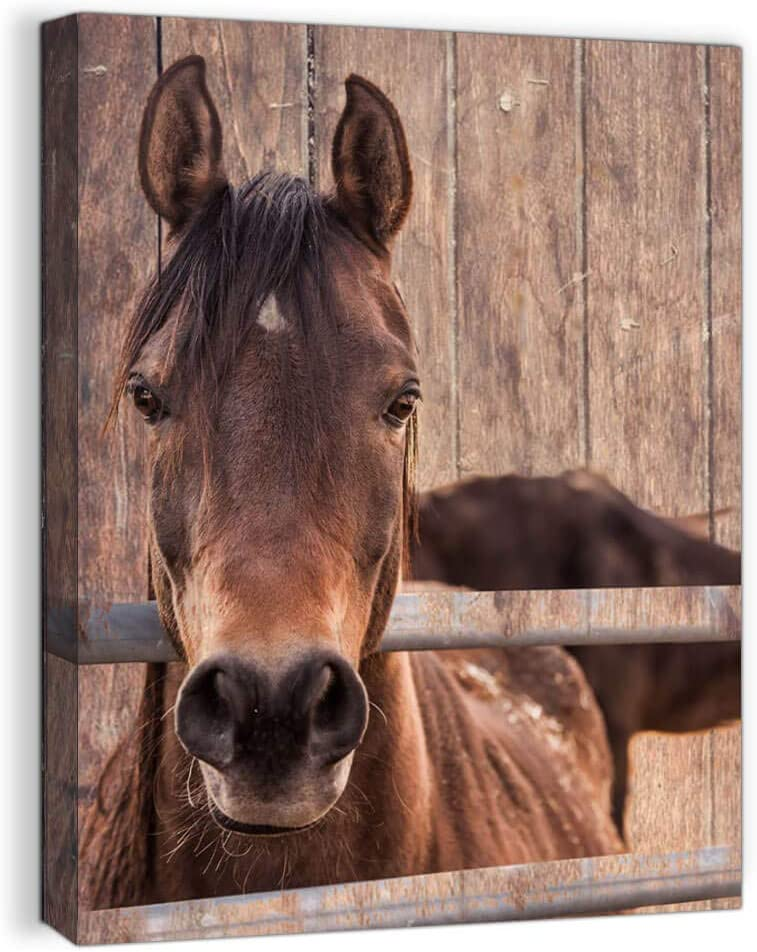 Farmhouse Rustic Wall Art for Bedroom Home Bathroom Decor for the Home Country Horse Pictures Artwork for Walls Kitchen Wall Decor Modern Prints Wood Grain Canvas Framed Animal Wall Art Size 12x16