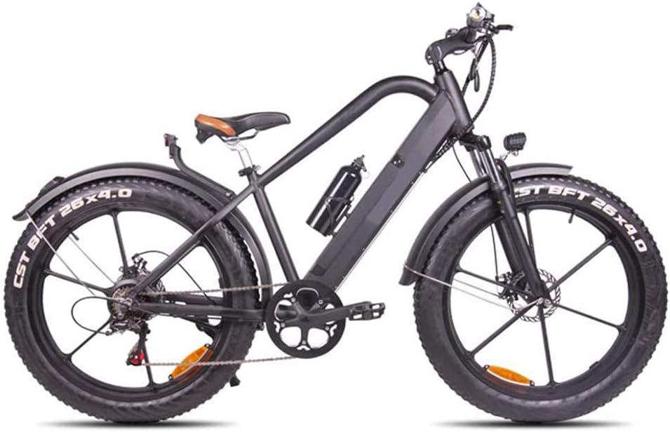 Ainy Electric Bike Fat Tire