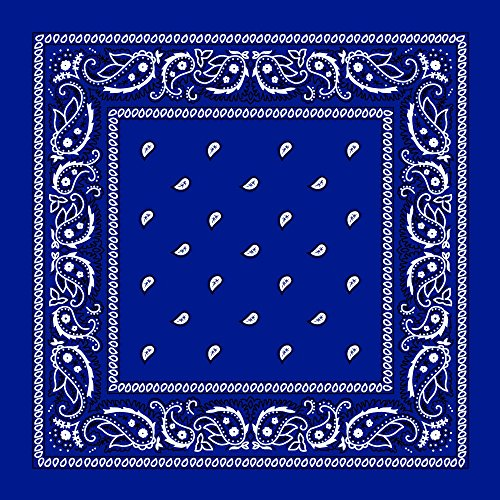 M.H.I. 12 Pack One Dozen Color Double Sided Print Paisley Cowboy Novelty 100% Cotton Bandana Scarf(Many Colors) (Royal Blue)