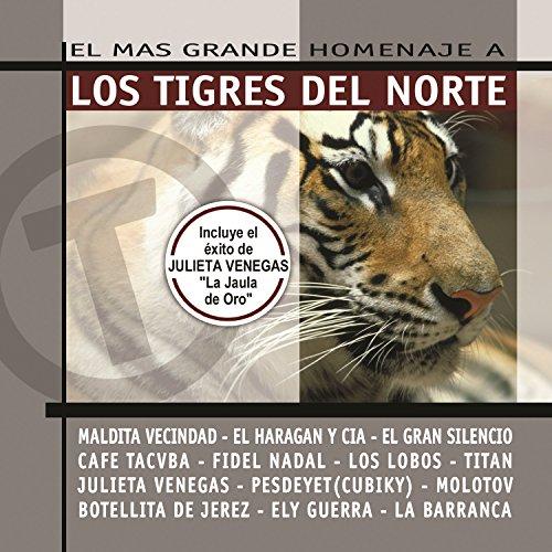 La Jaula De Oro (Los Tigres Del Norte Jaula De Oro)