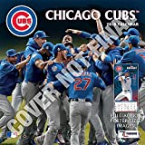 Chicago Cubs 2019 Calendar