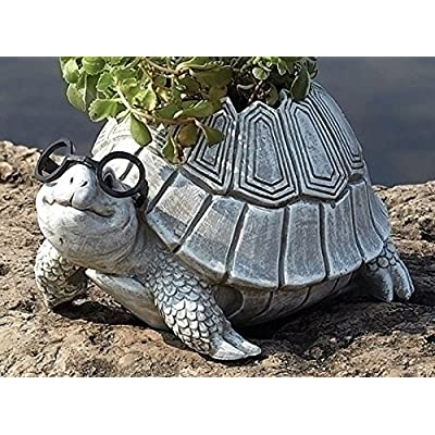 Roman Woodland Critters with Eye Glasses Novelty Planters (Turtle),One Size: Home & Kitchen