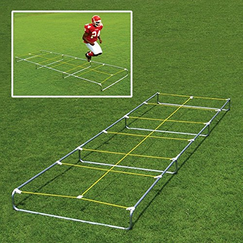 High Step Agility Trainer (Fisher Agility Master 20' High Step Trainer)