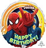 The Ultimate Spider-Man 5th Birthday Party Supplies and Balloon Decorations