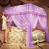 Tulle Palace Mosquito Net, Double Household Stainless Steel Bracket Floor-standing Bed Canopy Mosquito Curtain-D Queen2