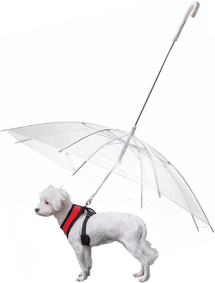S-Lifeeling - Paraguas plegable para perros con correa, para nieve y lluvia, transparente, se adapta a la espalda de la mascota de hasta 50,8cm