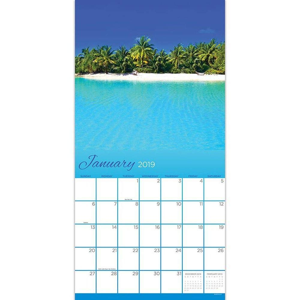 Amazon.com : Tropical Beaches 2019 Wall Calendar : Office ...
