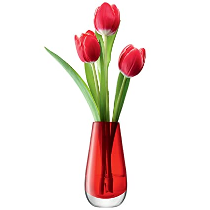 Amazon Lsa International Flower Color Bud Vase H55 Red Home