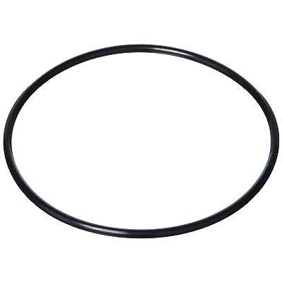 Waterway Plastics 806105129789 O-Ring Filter Top: Garden & Outdoor