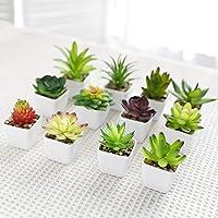 Luyue Plantas suculentas artificiales con maceta realistas falsas suculentas en maceta, mini vegetación sintética para…