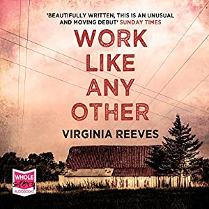 Work Like Any Other Audiobook