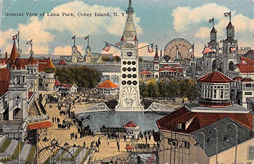 Coney Island New York Luna Park Birdseye View Antique Postcard K89504
