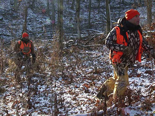 - Opening Day: Wisconsin Whitetail Deer 1