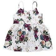2019 Baby Girls Dress, Toddler Girl Boho Floral Print Sleeveless Princess Dress Beach Sundress Summer Clothes (6-12 Months, Beige)