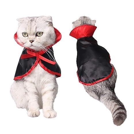 lulalula Disfraz de Gato, Disfraz de Halloween para Mascotas ...