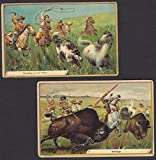 Buffalo Indian c 1900 Wild Mustang Horse Hunt Antique 2x Advertising Trade Cards