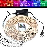 LYEJM 10/15M SMD5050 LED RGB Flexible Rope Outdoor Waterproof Strip Light + Plug + Remote Control AC110V LYEJM (Size : Length 15M)