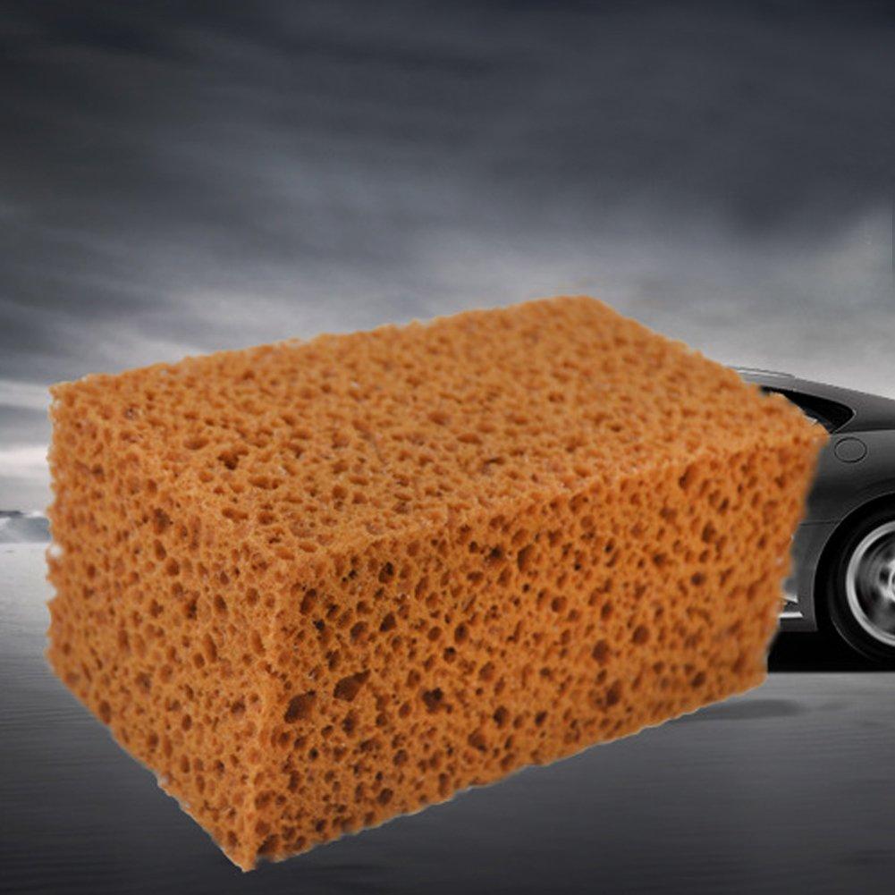 lavables en Machine /à Laver pour Voiture avec Fermeture /Éclair SUV Dandeliondeme Kit de Nettoyage Longue dur/ée pour Bateaux de Lavage Super absorbants