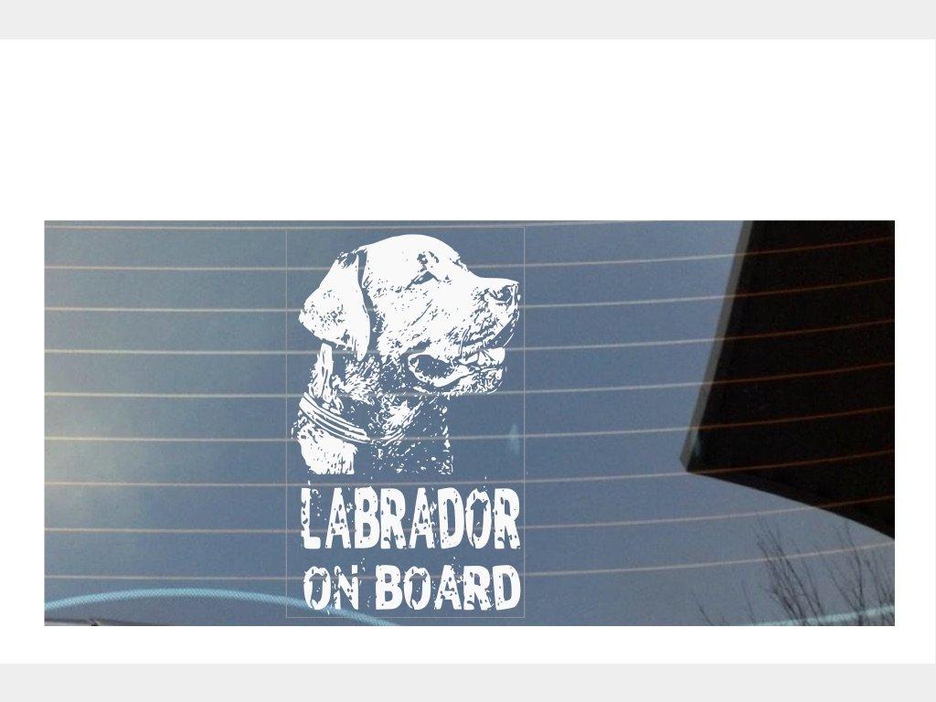 Labrador on Board auto adesivo per finestra –  bianco Shaw Print