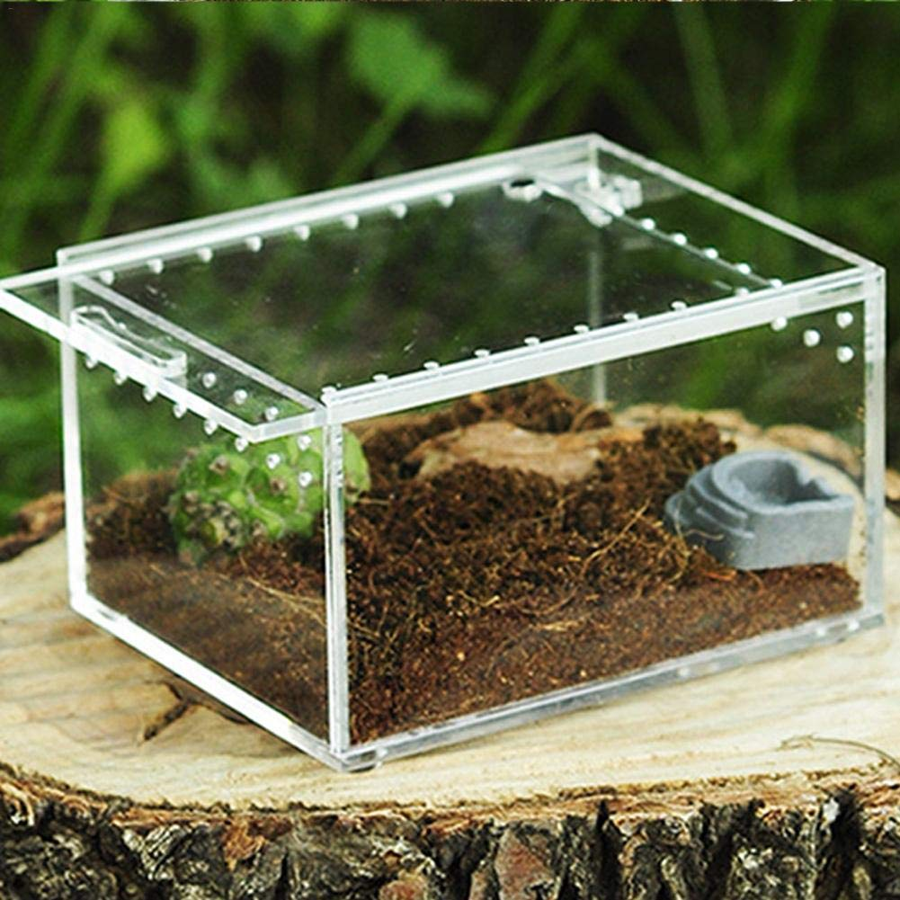 "Light-Ren Snake Rack Transparent Reptile Breeding Box Acrylic Sliding Cover Type Feeding Box (4.13""X3.3""X2.36 "")"