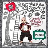 Super Soft Baby Monthly Milestone Blanket Set: Large 47x47