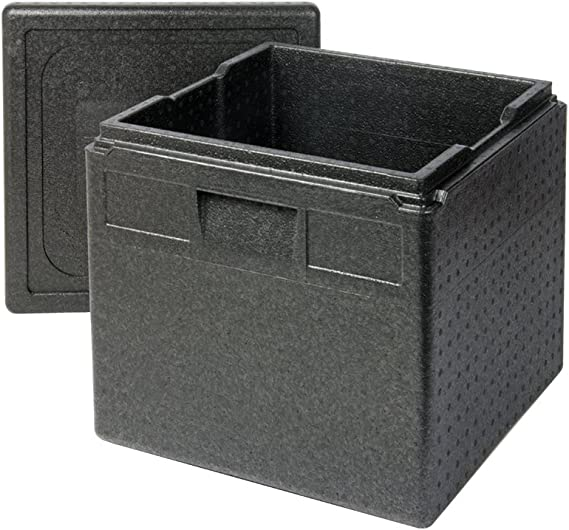 Thermo Future Box Caja térmica, EPP (Polipropileno expandido ...