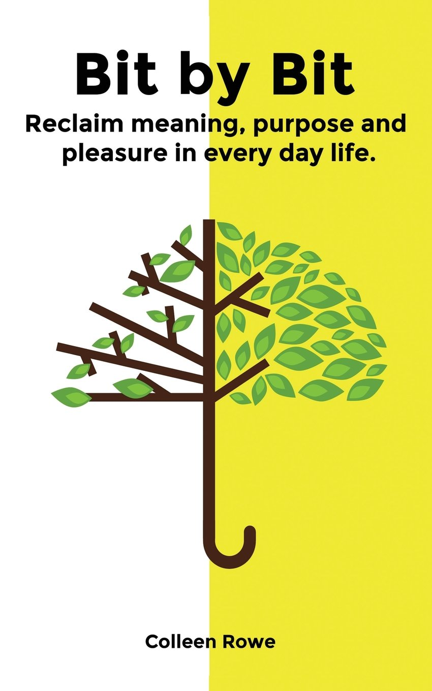Bit by Bit: Reclaim Meaning, Purpose and Pleasure in Everyday Life pdf