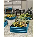 """Gardener's Supply Company Corrugated Metal Powder-Coated Steel Raised Bed, 34"""" x 68"""" Blue 8 STYLISH and STURDY- Richly hued raised bed made from sturdy yet lightweight powder-coated steel complements your landscape and showcases plants. BENEFITS- Extra deep to accommodate large plants. Lightly textured surface. Raised beds are easier to plant and tend than in-ground beds, with fewer pests and weeds. MATERIALS and MEASUREMENTS- Powder-coated steel - 68"""" L x 35-1/4"""" W x 11-3/4"""" H - Holds 17 cu. ft. of soil"""