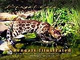 Bengals Illustrated 2014 Bengal Cat Calendar through April 2015