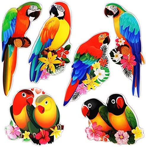 MORCART Parrot Magnets for Fridge Decorative Refrigerator Magnets Locker Magnets for Office Cabinets Whiteboards Classroom