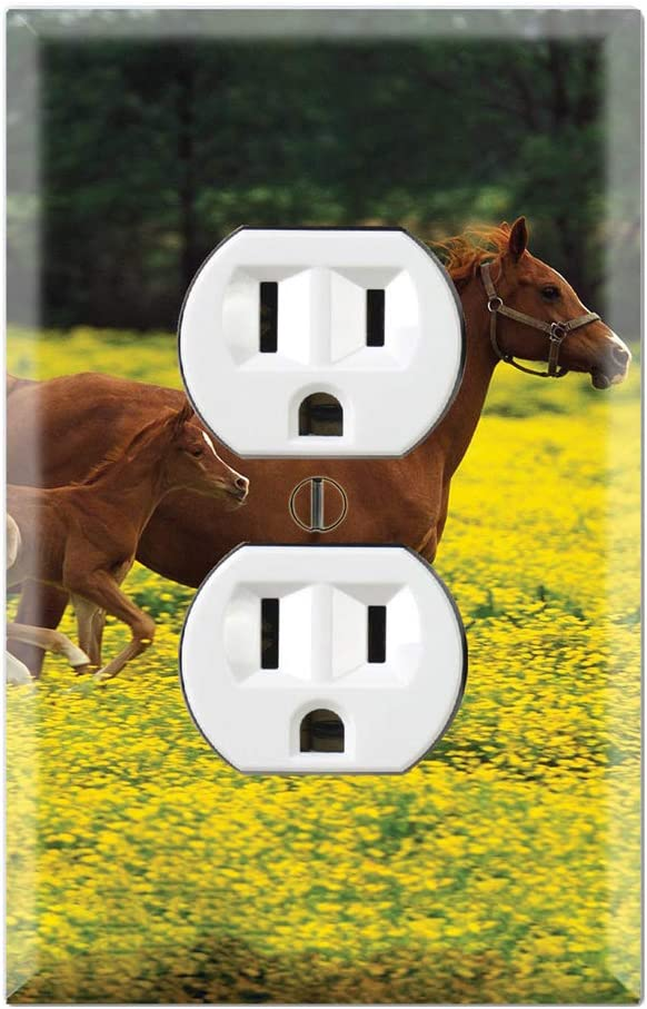 Cute Baby Horse Running With Mom Decorative Duplex Outlet Wall Plate Cover Amazon Com