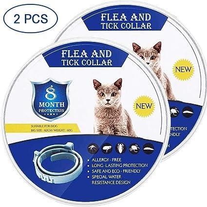 LATTE - Collar antipulgas para Gatos y Perros pequeños ...