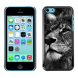 TECHCASE**Cubierta de la caja de protección la piel dura para el ** Apple iPhone 5C ** Lion Black White Picture Nature Big Cat
