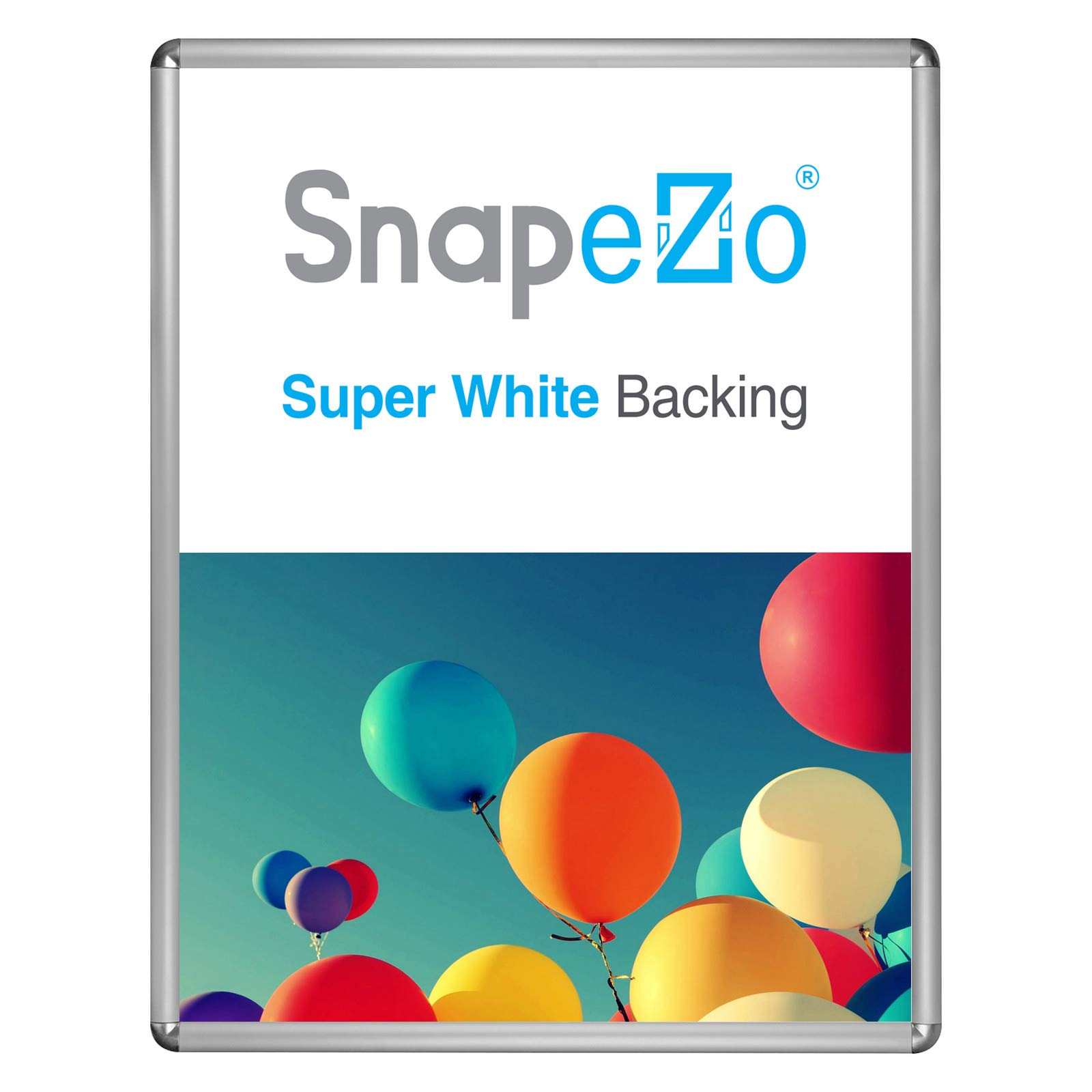 SnapeZo Movie Poster Frame 30x40 Inches, Silver 1.25 Inch Aluminum Profile, Round-Cornered, Front-Loading Snap Frame, Wall Mounting, Professional Series
