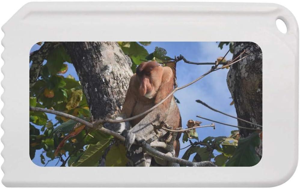 Stamp Press Proboscis Monkey Plastic Ice Scraper IC00005771