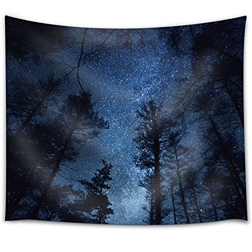 Starry Sky Above a Forest